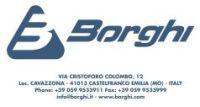 Logo Borghi